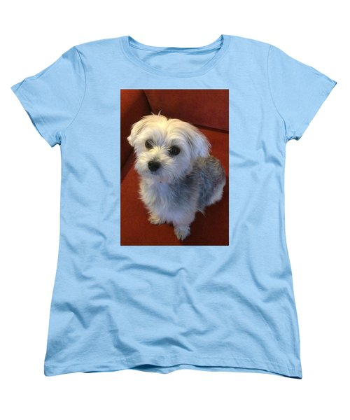 Yorkshire Terrier Women's T-Shirt (Standard Cut) by Robin Regan