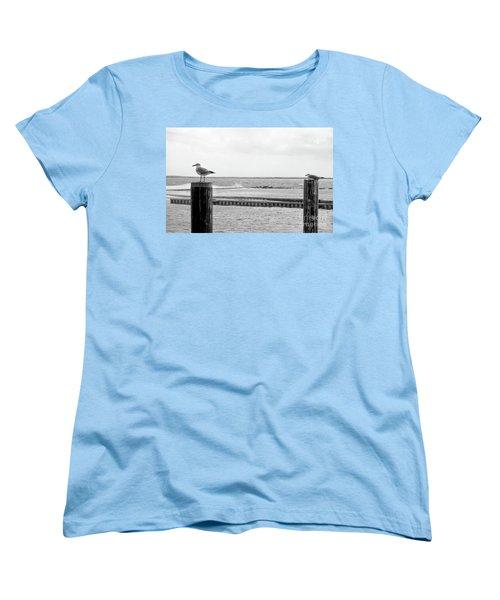 Seagulls Women's T-Shirt (Standard Fit)