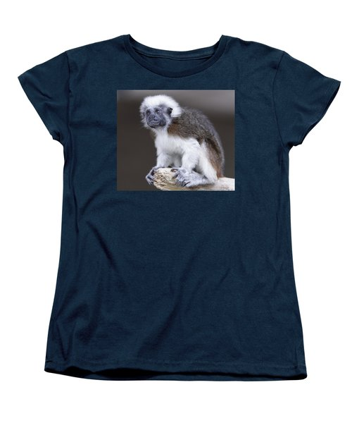 Women's T-Shirt (Standard Cut) featuring the photograph Cotton Top Tamarin by Shoal Hollingsworth
