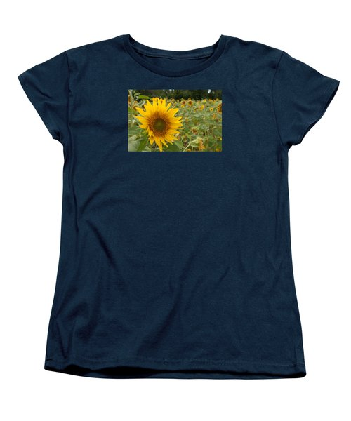 Sun Flower Fields Women's T-Shirt (Standard Cut) by Miguel Winterpacht