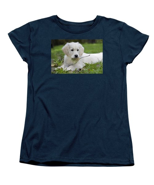 101130p064 Women's T-Shirt (Standard Cut) by Arterra Picture Library