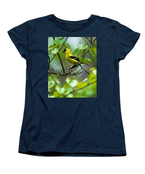 Women's T-Shirt (Standard Cut) featuring the photograph American Goldfinch by Robert L Jackson