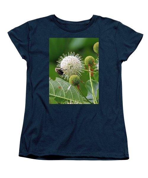 Bumbler Women's T-Shirt (Standard Cut) by Jennifer Wheatley Wolf