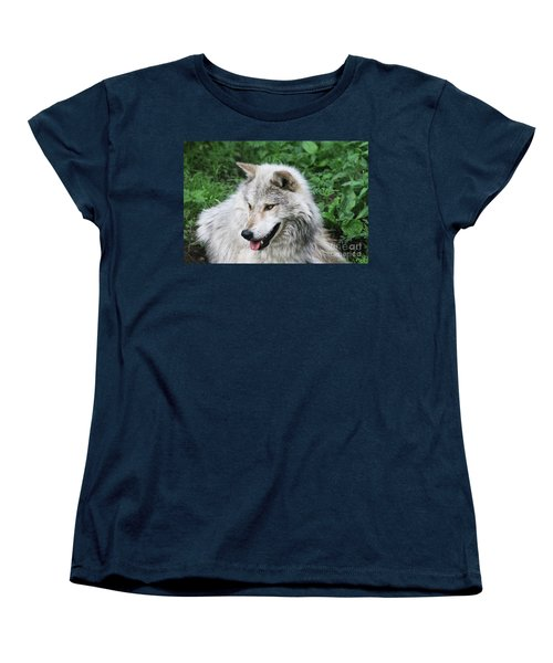 Gray Wolf Women's T-Shirt (Standard Cut) by Alyce Taylor