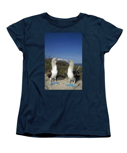Blue-footed Boobies Courting Galapagos Women's T-Shirt (Standard Cut) by Tui De Roy