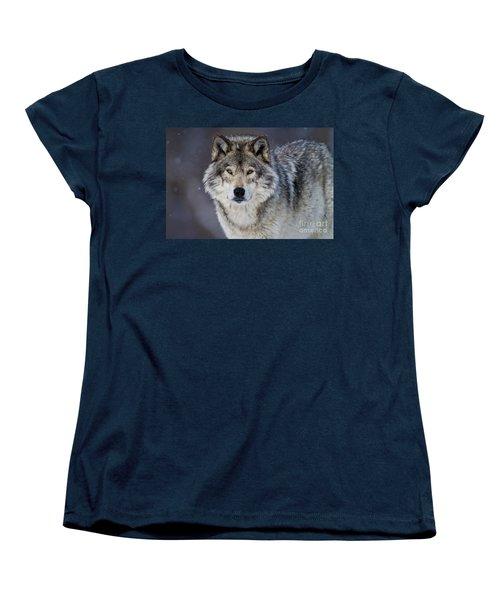 Timber Wolf Women's T-Shirt (Standard Cut) by Michael Cummings