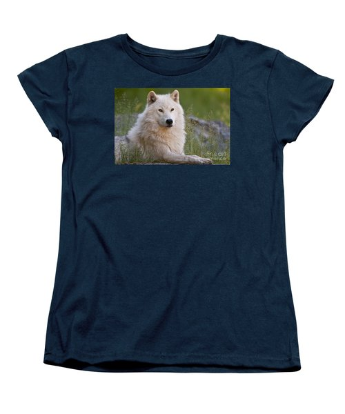 Arctic Wolf Women's T-Shirt (Standard Cut) by Wolves Only