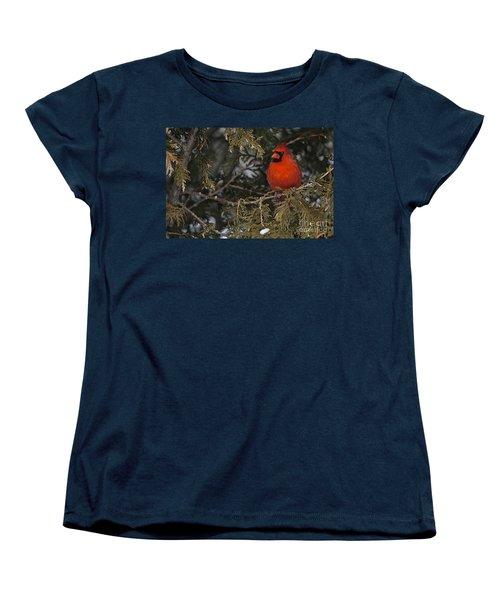 Northern Cardinal Women's T-Shirt (Standard Cut) by Michael Cummings