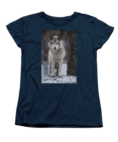 Timber Wolf  Women's T-Shirt (Standard Cut) by Wolves Only