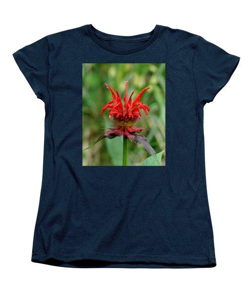A Flowering Red Castle Beauty Women's T-Shirt (Standard Cut) by Kim Pate