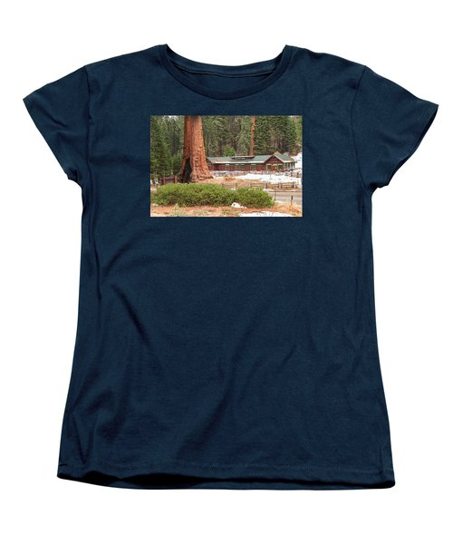 A Giant Among Trees Women's T-Shirt (Standard Cut) by Muhie Kanawati