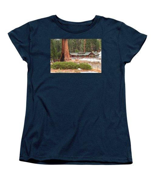 A Giant Among Trees Women's T-Shirt (Standard Cut) by Muhie Kanawati