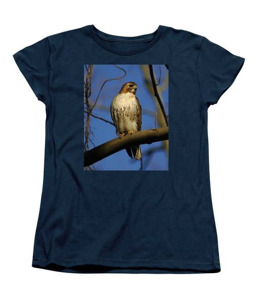 Women's T-Shirt (Standard Cut) featuring the photograph A Red Tail Hawk by Raymond Salani III