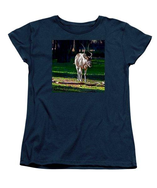 Addax Women's T-Shirt (Standard Cut) by Miroslava Jurcik