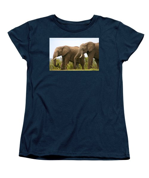 African Elephants Women's T-Shirt (Standard Cut) by Menachem Ganon