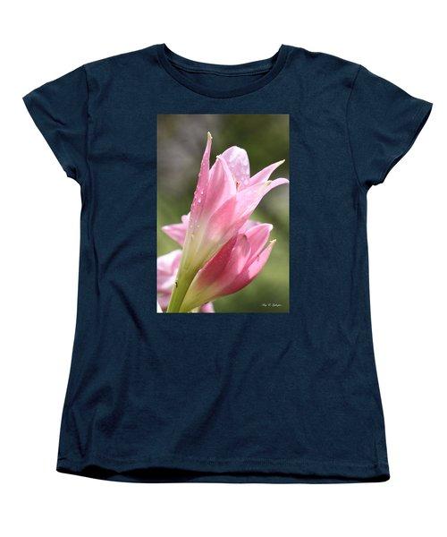 After The Rain Women's T-Shirt (Standard Cut) by Amy Gallagher