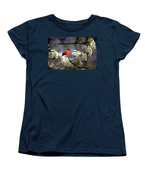 And A Carninal In A Pear Tree Women's T-Shirt (Standard Cut) by Bonnie Willis