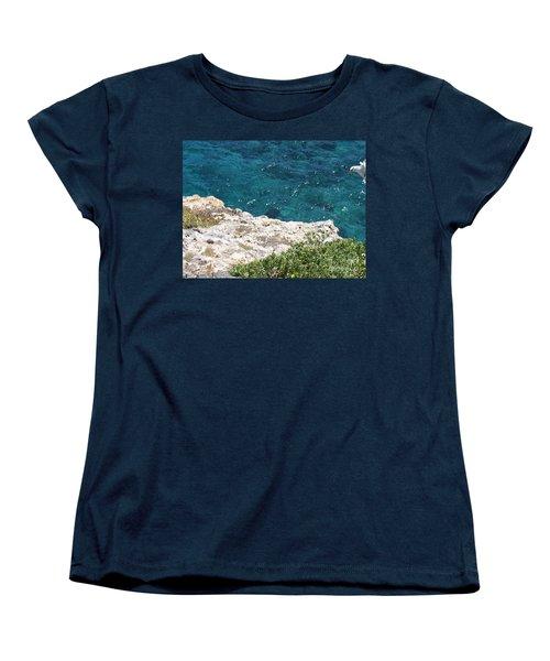 Antigua - Flight Women's T-Shirt (Standard Cut) by HEVi FineArt