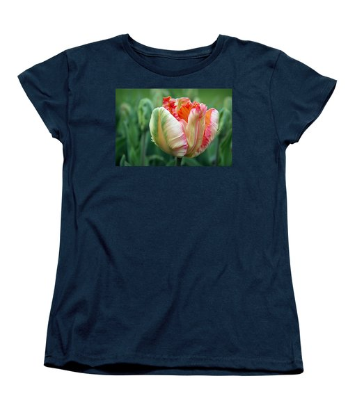Apricot Parrot Tulip Women's T-Shirt (Standard Cut) by Joseph Skompski