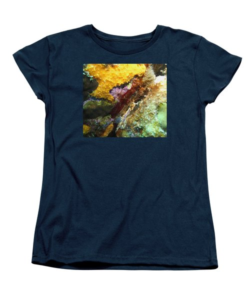 Women's T-Shirt (Standard Cut) featuring the photograph Arrow Crab In A Rainbow Of Coral by Amy McDaniel