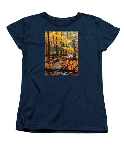 Women's T-Shirt (Standard Cut) featuring the photograph Autumn Creek In The Rain by Rodney Lee Williams