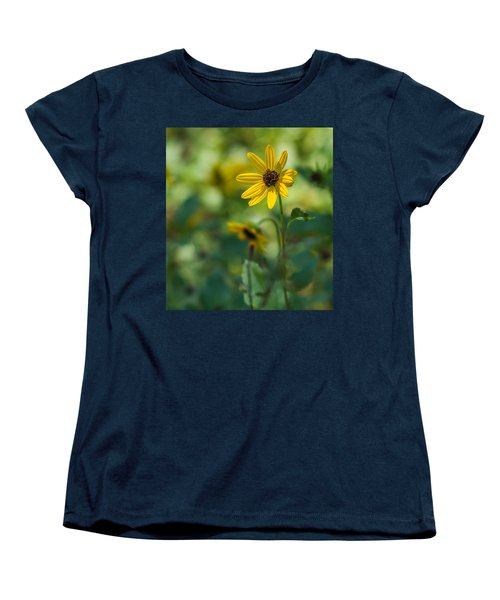 Awakening Women's T-Shirt (Standard Cut) by Jane Luxton