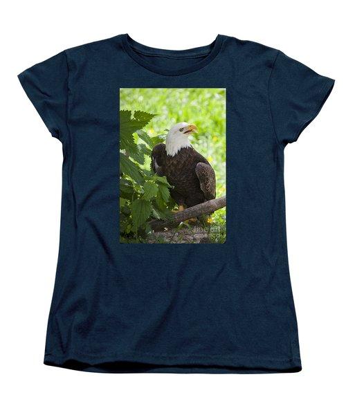 Bald Eagle Women's T-Shirt (Standard Cut) by Chris Dutton