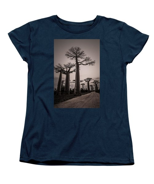 Baobab Avenue Women's T-Shirt (Standard Cut) by Linda Villers