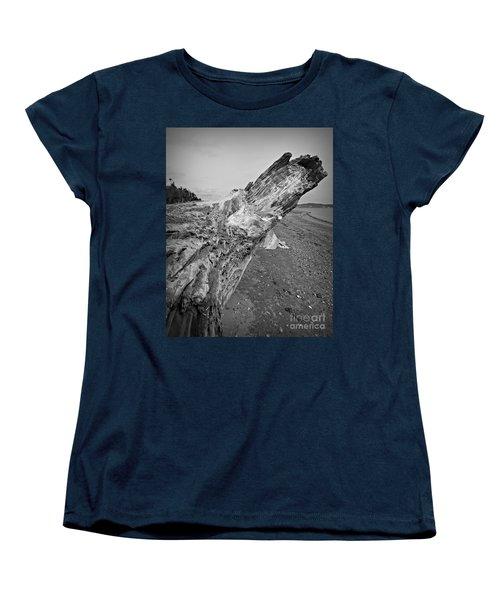 Beach Driftwood View Women's T-Shirt (Standard Cut) by Chalet Roome-Rigdon