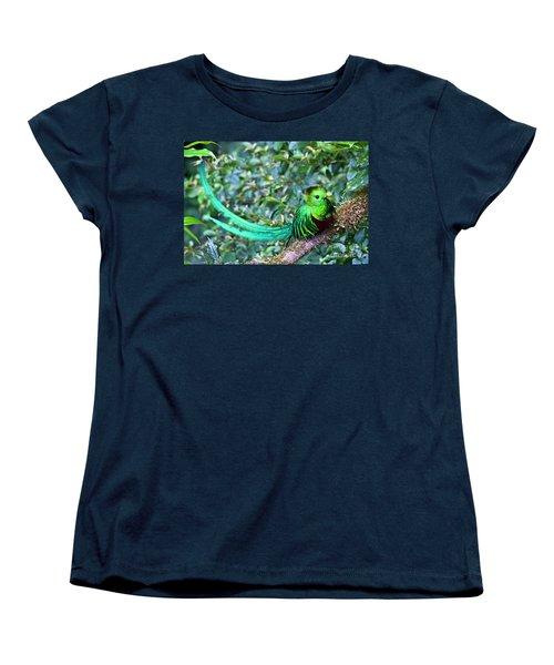 Beautiful Quetzal 3 Women's T-Shirt (Standard Cut) by Heiko Koehrer-Wagner