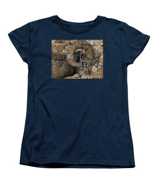 Bighorn Rock Art Women's T-Shirt (Standard Cut) by Steve McKinzie