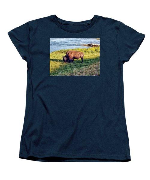 Women's T-Shirt (Standard Cut) featuring the photograph Bison 4 by Dawn Eshelman