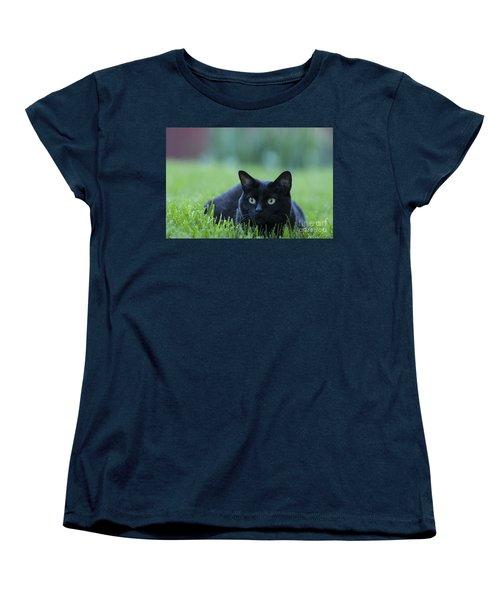 Black Cat Women's T-Shirt (Standard Cut) by Juli Scalzi