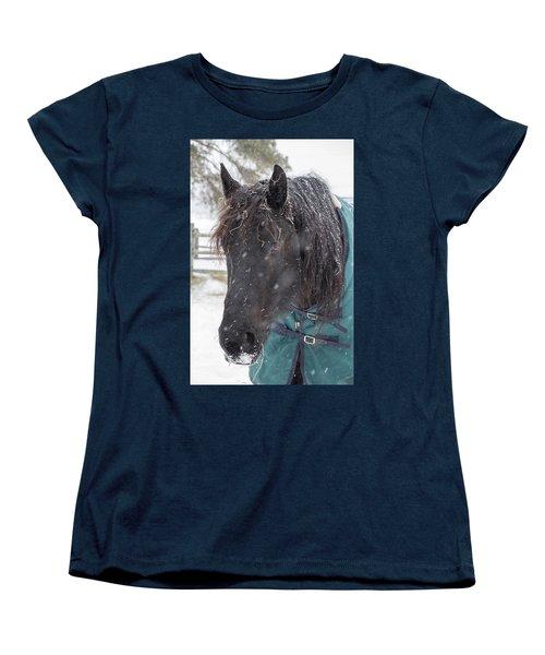 Black Horse In Snow Women's T-Shirt (Standard Cut)