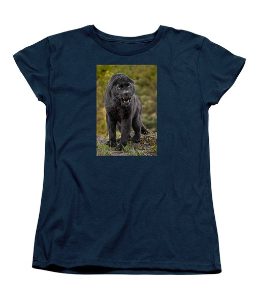 Black Panther Women's T-Shirt (Standard Cut) by Jerry Fornarotto
