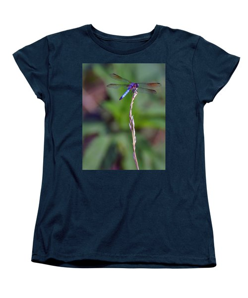 Blue Dragonfly On A Blade Of Grass  Women's T-Shirt (Standard Cut)