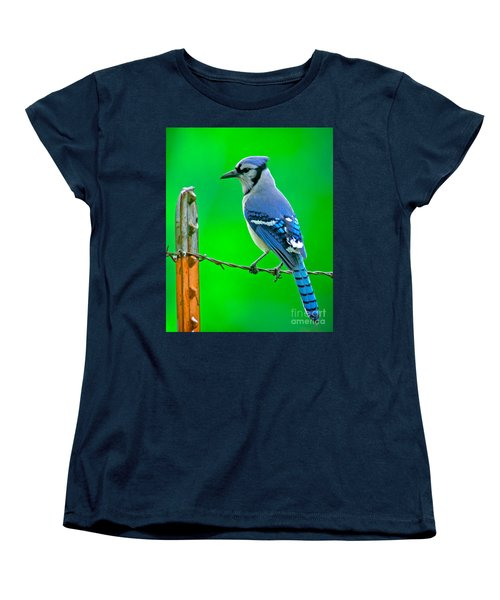 Blue Jay On The Fence Women's T-Shirt (Standard Cut) by Robert Frederick