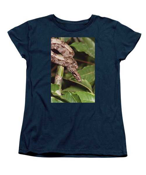 Boa Constrictor Coiled South America Women's T-Shirt (Standard Cut) by Gerry Ellis