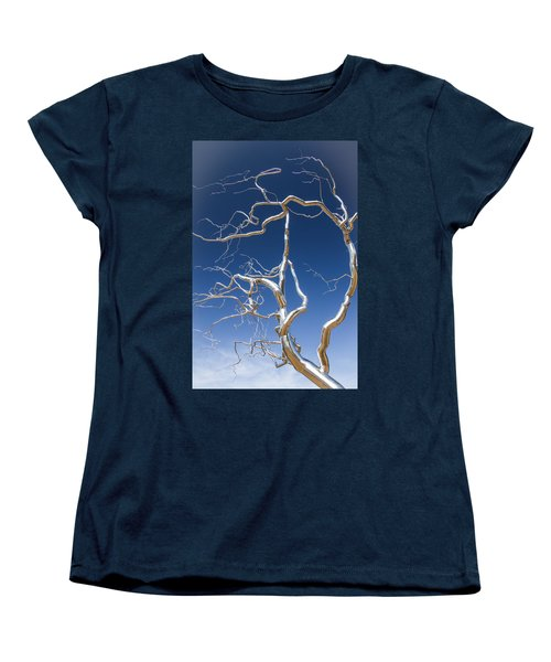 Branches Of Silver Women's T-Shirt (Standard Cut) by Steven Bateson