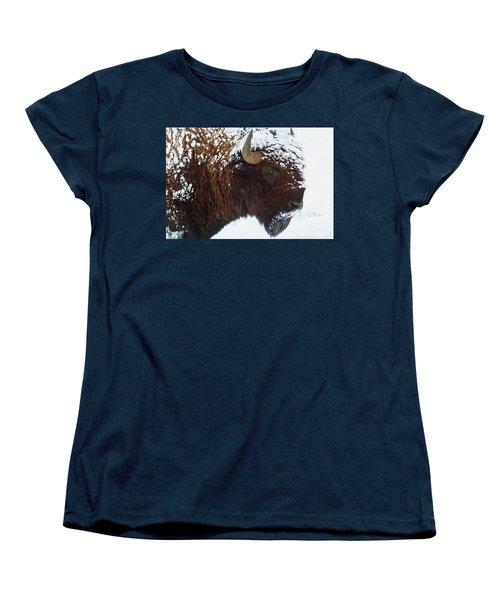 Buffalo Nickel Women's T-Shirt (Standard Cut) by Jim Garrison
