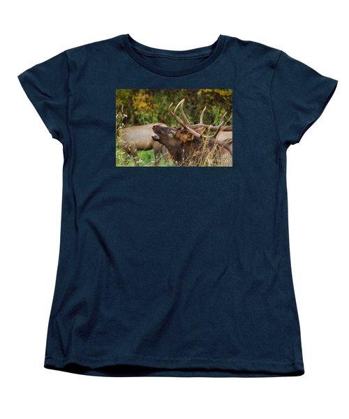 Bugling Bull Elk Women's T-Shirt (Standard Cut) by Patrick Shupert