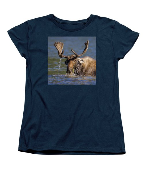 Bull Moose Sampling The Vegetation Women's T-Shirt (Standard Cut) by Jack Bell