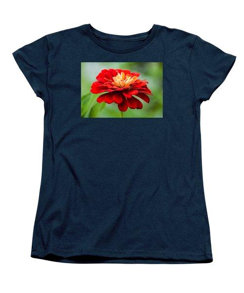 Bursts Of Color Women's T-Shirt (Standard Cut) by Parker Cunningham