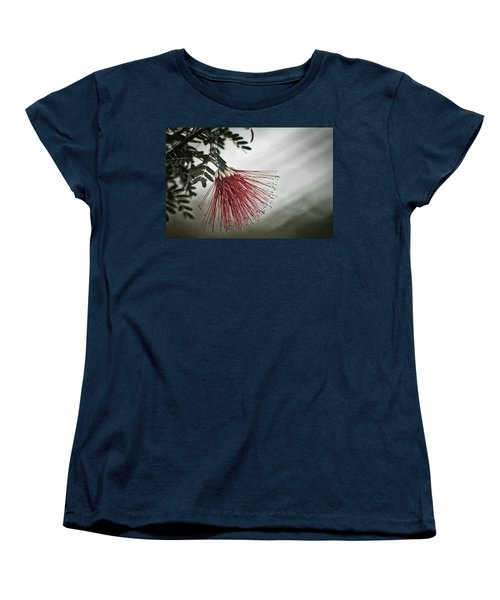 Calliandra Californica Women's T-Shirt (Standard Cut) by Stuart Litoff