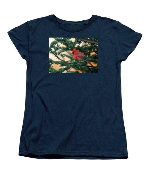 Cardinal In Balsam Women's T-Shirt (Standard Cut) by Susan Capuano
