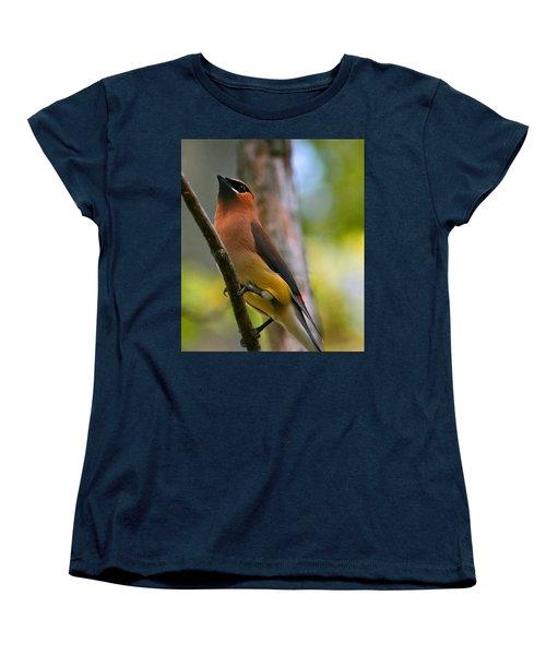 Cedar Wax Wing Women's T-Shirt (Standard Cut) by Roger Becker