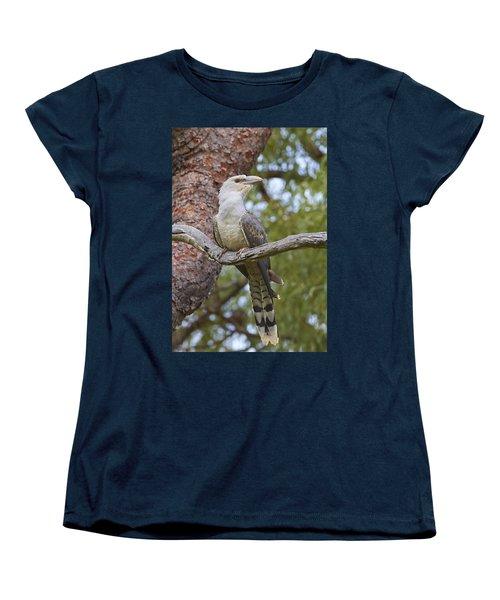 Channel-billed Cuckoo Fledgling Women's T-Shirt (Standard Cut) by Martin Willis