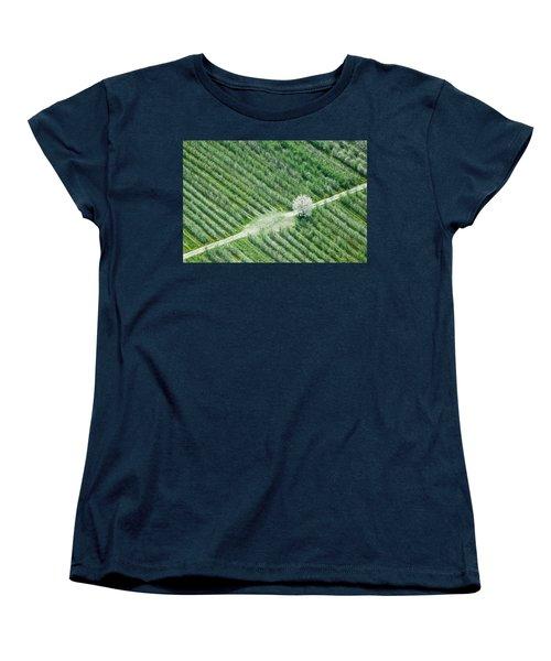 Women's T-Shirt (Standard Cut) featuring the photograph Cherry Tree by Davorin Mance