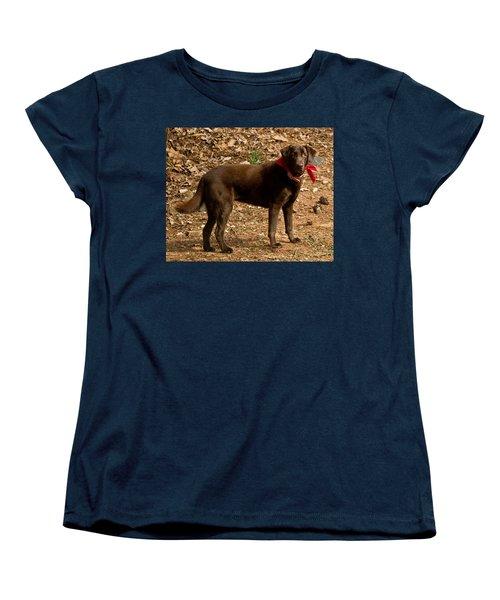 Women's T-Shirt (Standard Cut) featuring the photograph Chocolate Lab by Robert L Jackson