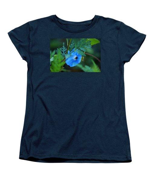 Country Blue Women's T-Shirt (Standard Cut) by Kim Pate